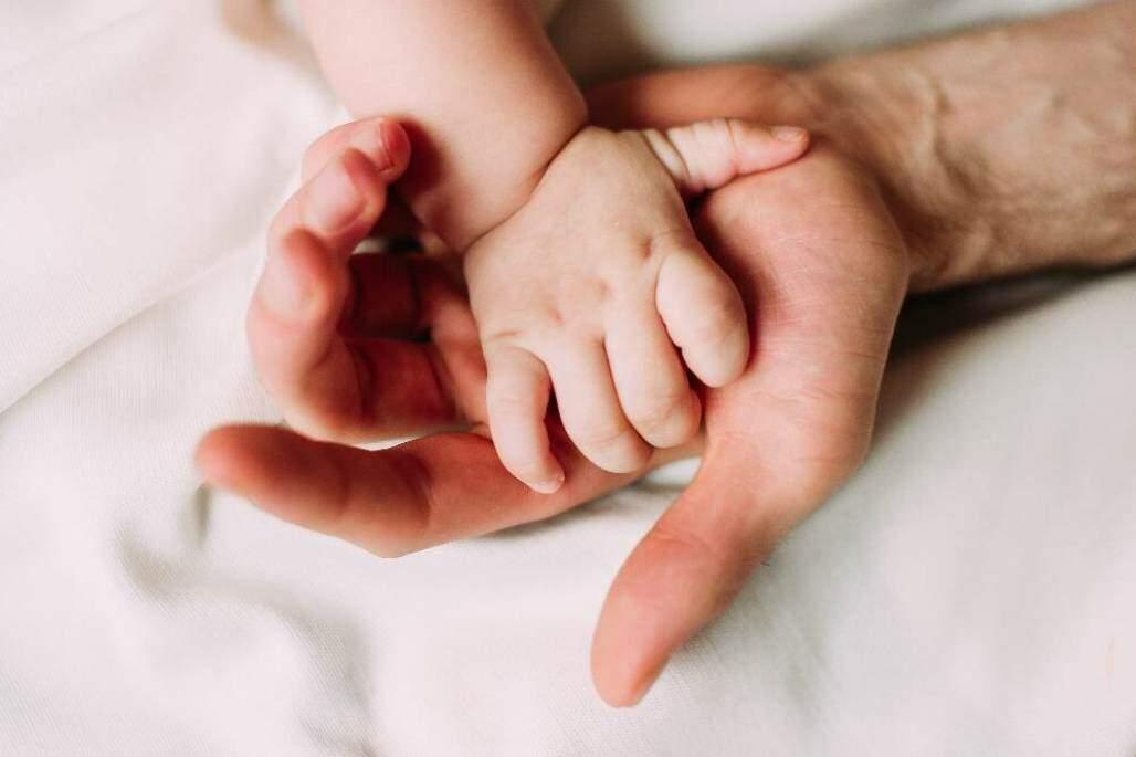 aperto de mão do pai. (Shutterstock/  Dasha Muller)